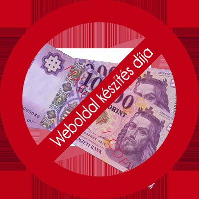 Weboldal bérlés esetén a pénz nálad marad